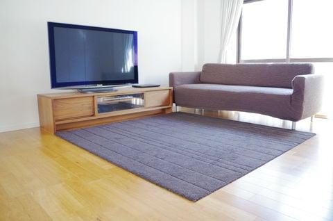 オリジナル リビング ソファ テレビ