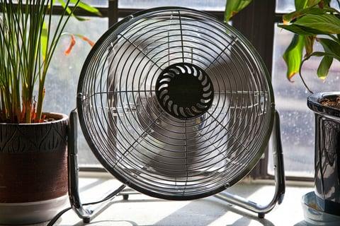 扇風機 ファン 植物 サーキュレーター