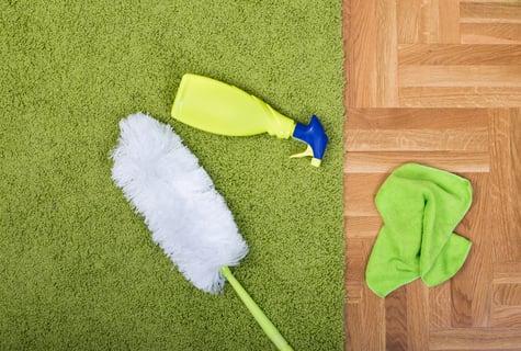 掃除道具 雑巾 スプレー 毛はたき