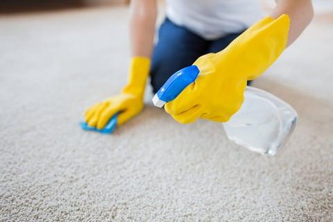 掃除 ゴム手袋 カーペット