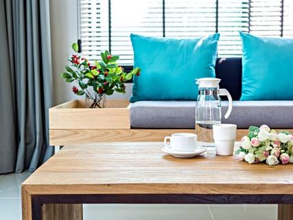 リビング ソファー テーブル 植物