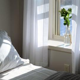 寝室 ベッド 窓 植物