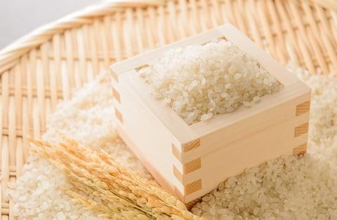キッチン 米びつ