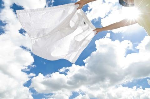 洗濯 シャツ 干す 太陽