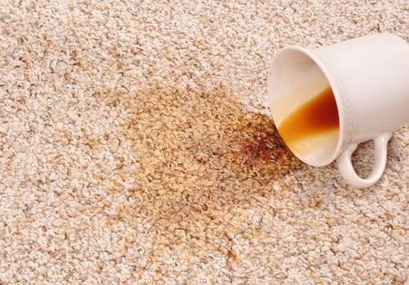 カーペット コーヒー シミ