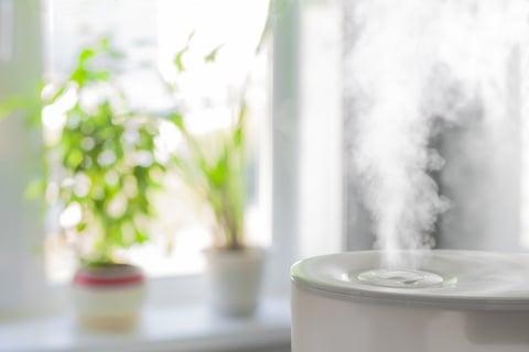 加湿器の蒸気