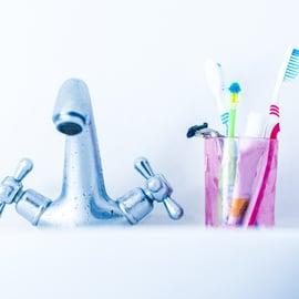 蛇口 歯ブラシ