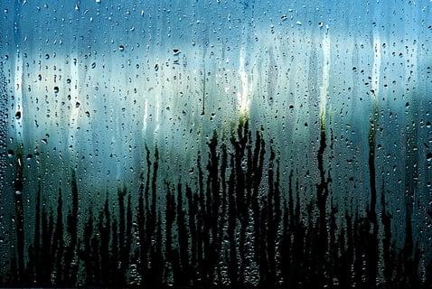 雨上がり 結露