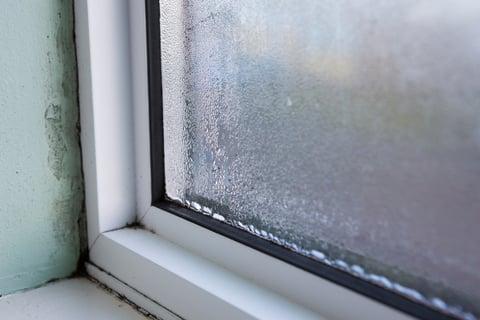 結露 サッシ 窓 掃除