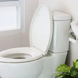 トイレの洗浄剤のおすすめ8選!置くだけタイプで手間は最小限に