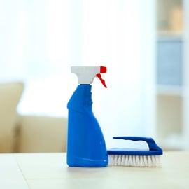 洗剤 ブラシ リビング 掃除