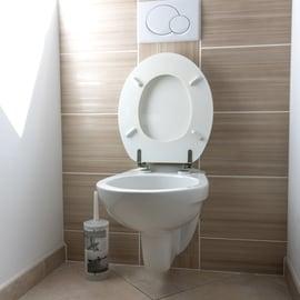 トイレ ブラシ