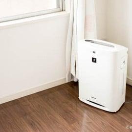 空気清浄機はクエン酸を使ってキレイにできる?つけ置きのやり方は?