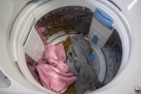 洗濯槽に洋服を入れっぱなし