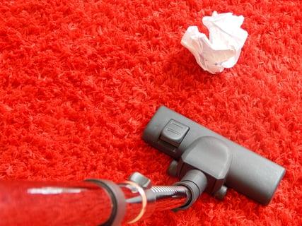 カーペットの掃除