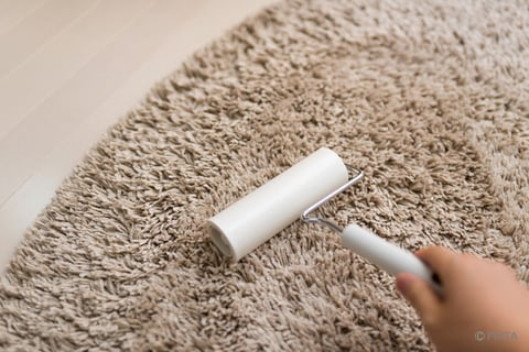 コロコロでカーペット掃除
