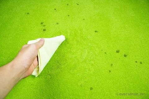 カーペットのシミをクロスで拭く