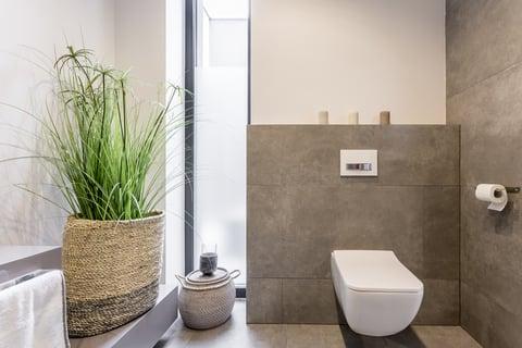 トイレ 収納 植物