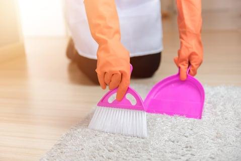 掃除 絨毯 カーペット ほうき
