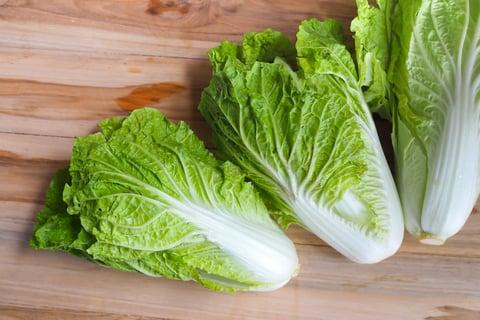 白菜 野菜 保存 料理