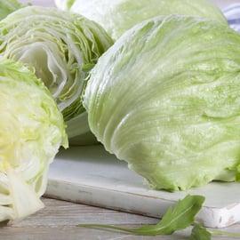 レタス 保存 野菜
