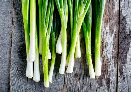 長ねぎ 保存 野菜